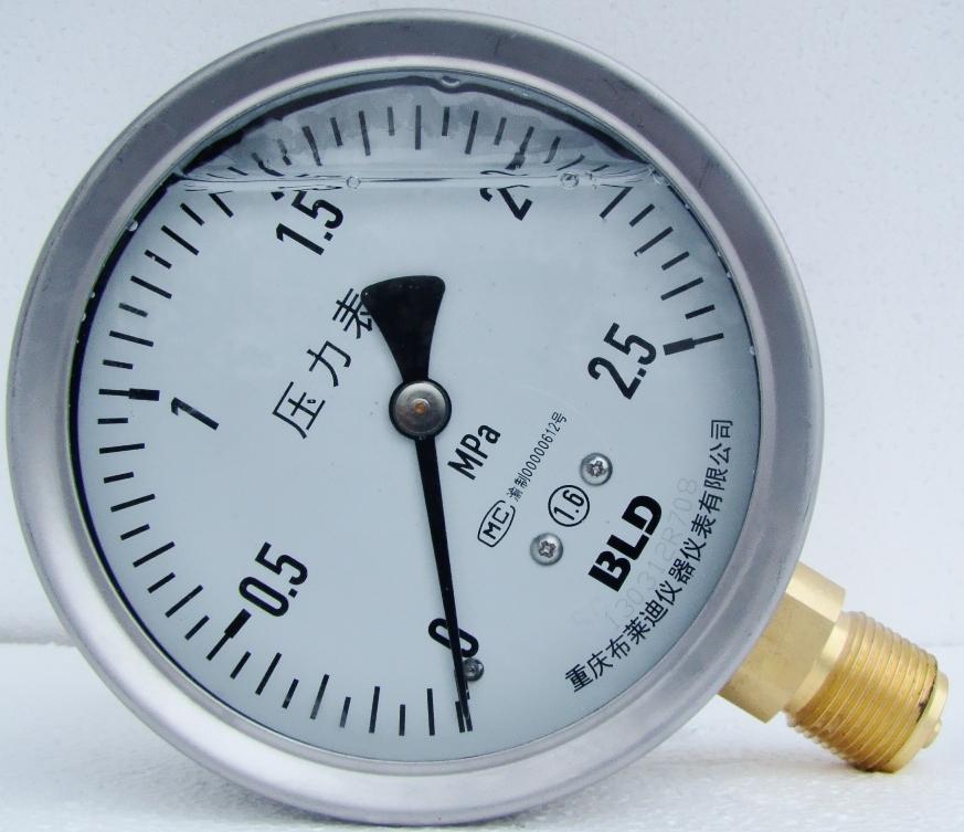 普通耐震压力表 YTN-100.A0