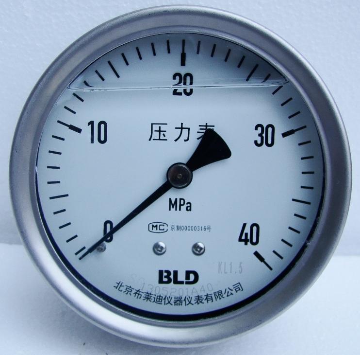 全鋼軸向耐震壓力表 YTHN-100.BZ